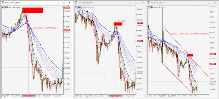Guppy Strategi trading legenda profit konsisten dengan menggunakan Multi MA